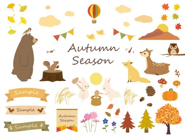 illustrazioni stock, clip art, cartoni animati e icone di tendenza di autumn nature set - miscanthus sinensis