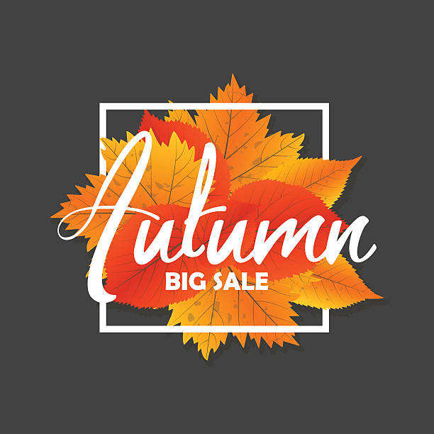 Autumn new season of sales and discounts, deals and offer. - Illustration vectorielle