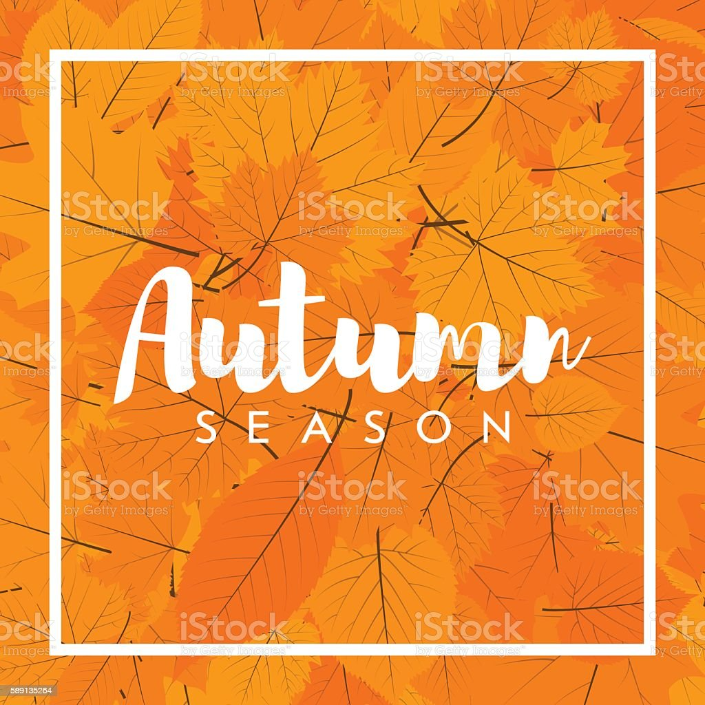 Autumn new season of sales and discounts, deals and offer. vector art illustration