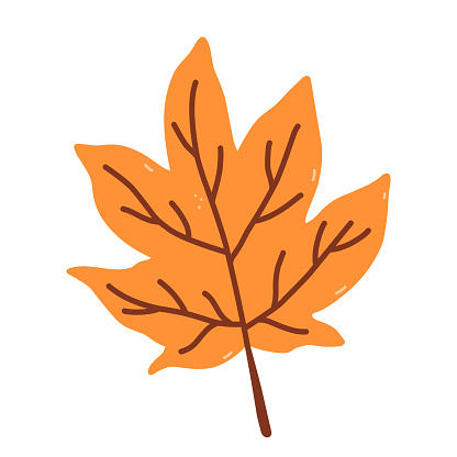 Autumn orange leaf isolated on white background. Vector hand-drawn illustration in cartoon flat style. Perfect for your project, cards, invitations, print, decorations.