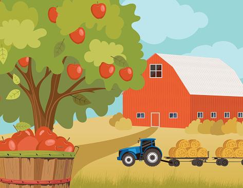 Autumn Orchard Farm Scene