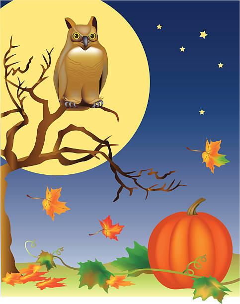 Harvest Moon Clip Art, Vector Images & Illustrations - iStock