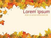 Autumn paper background