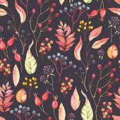 Autumn seamless pattern with Blackberry, Rose Hip fruit, leaves, branches and berries, vector illustration on dark background.