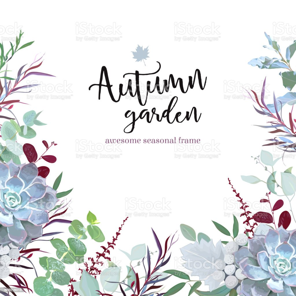 Plantas de otoño vector diseño de marco de eucalipto, agon - ilustración de arte vectorial