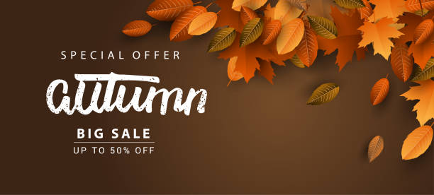 autumn sale background, hand drawn autumn calligraphy with falling leaves - autumn stock illustrations