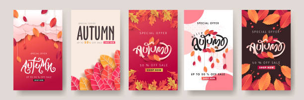 Autumn sale background layout decorate with leaves for shopping sale or promo poster and frame leaflet or web banner.Vector illustration template. vector art illustration