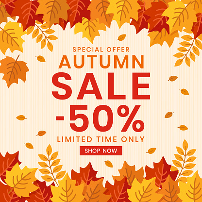 Autumn Sale banner background with leaves.