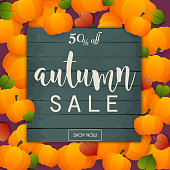 Autumn Sale Banner. Poster, Flyer, Vector. Pumpkins and leafs on a background.
