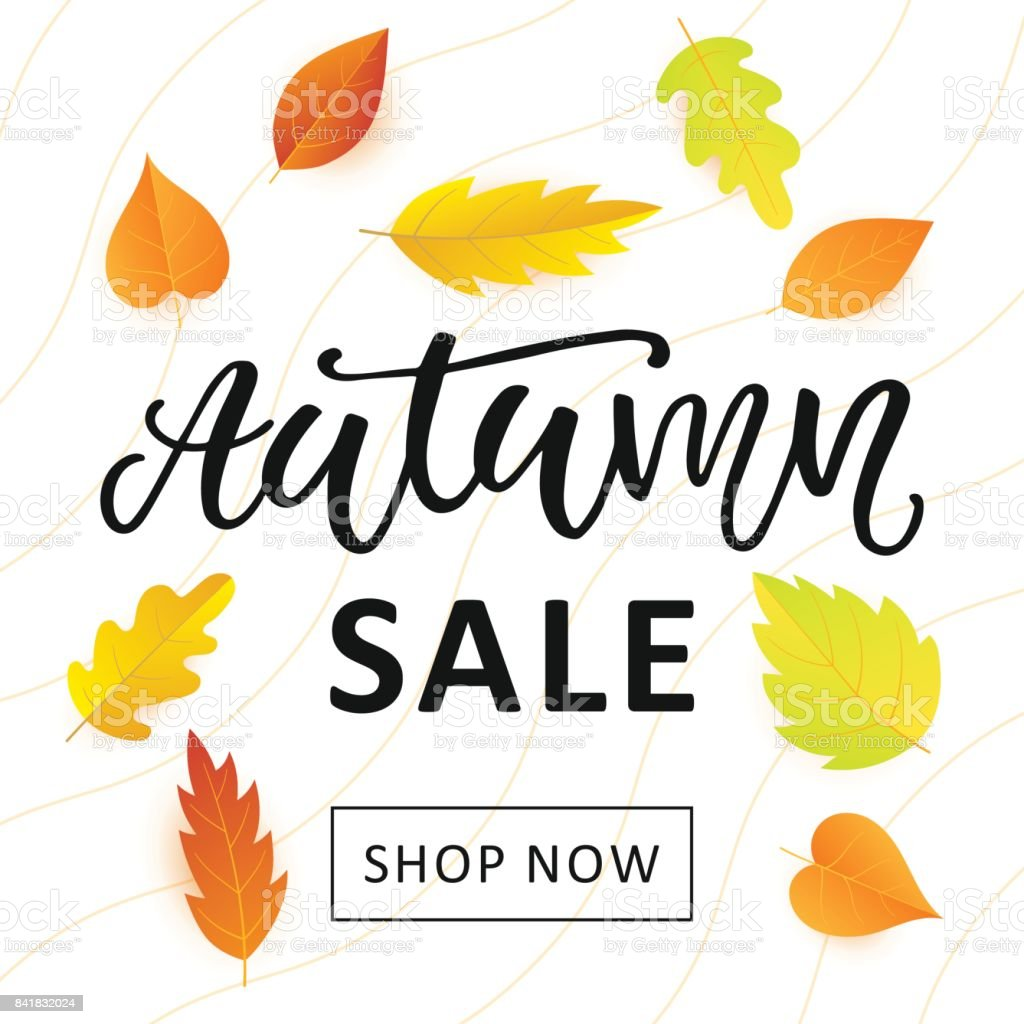 Autumn Sale Banner Template With Bright Colorful Fall Leaves Stock