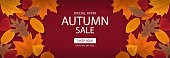 Autumn sale banner template with lettering. Background layout decorate with red, yellow and brown leaves for shop. Modern realistic design. Beautiful wallpaper. Flat style vector illustration.