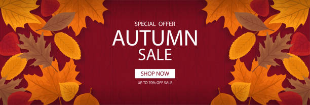 autumn sale banner template with lettering. background layout decorate with red, yellow and brown leaves for shop. modern realistic design. beautiful wallpaper. flat style vector illustration. - autumn stock illustrations