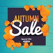 Autumn sale Banner with autumn leaf.  Poster, Flyer. Blurred background. Vector illustration.