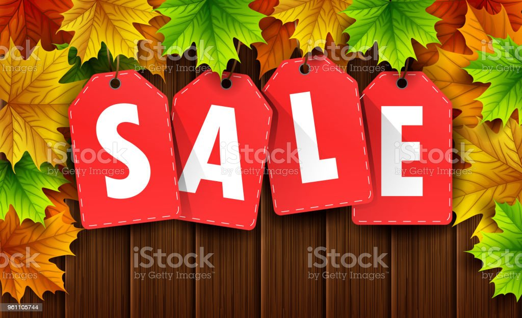autumn sale banner with colorful fall leaves on wood board