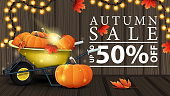 istock Autumn sale, discount web banner with wooden texture, garden wheelbarrow with a harvest of pumpkins and autumn leaves 1329886637