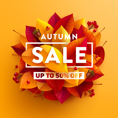 Autumn Sale poster or banner with autumn colorful leaves on yellow background.Greetings and presents for Autumn season.Vector illustration eps 10