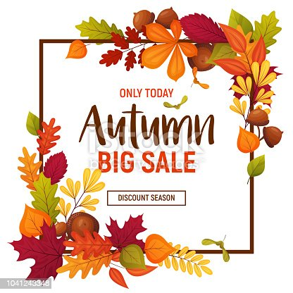 Autumn sale poster with cartoon acorns and various leaves. Colorful template for your design card