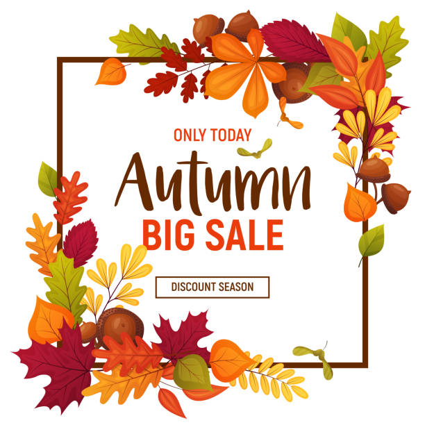 Autumn sale poster Autumn sale poster with cartoon acorns and various leaves. Colorful template for your design card fall leaves stock illustrations