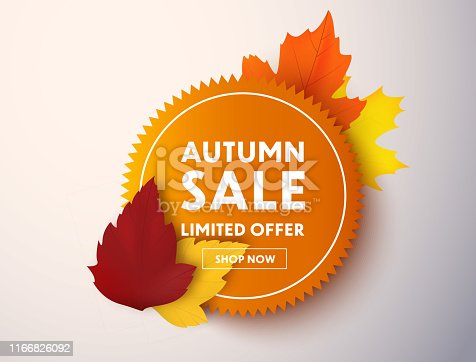 Autumn sale vector banner with autumn leaves. Price tag or label.