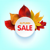 Autumn Sales Banner With Colorful Leaves. Vector.