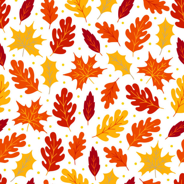 Autumn seamless pattern with maple and oak leaves Autumn seamless pattern with maple and oak leaves on white background. Perfect for seasonal and Thanksgiving Day greeting cards autumn leaf color stock illustrations