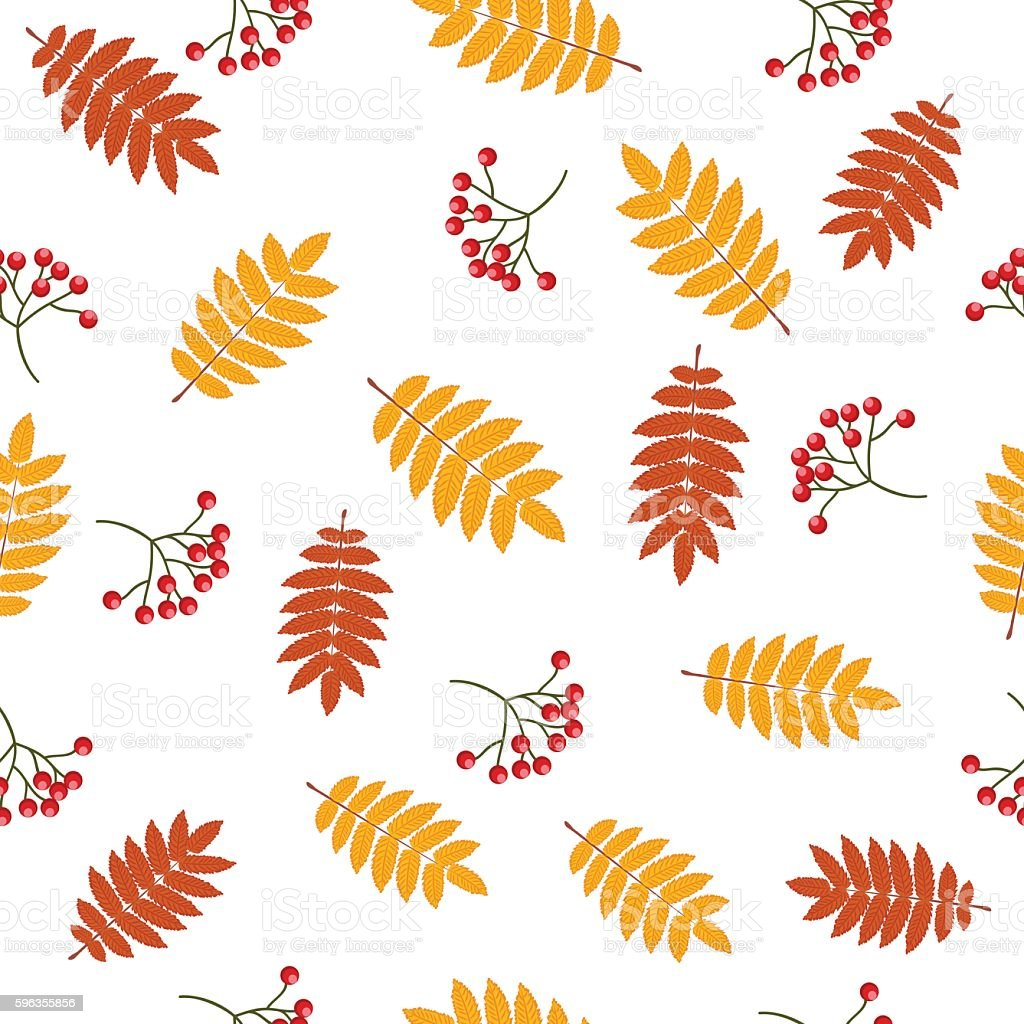Autumn seamless pattern with rowan royalty-free autumn seamless pattern with rowan stock vector art & more images of autumn