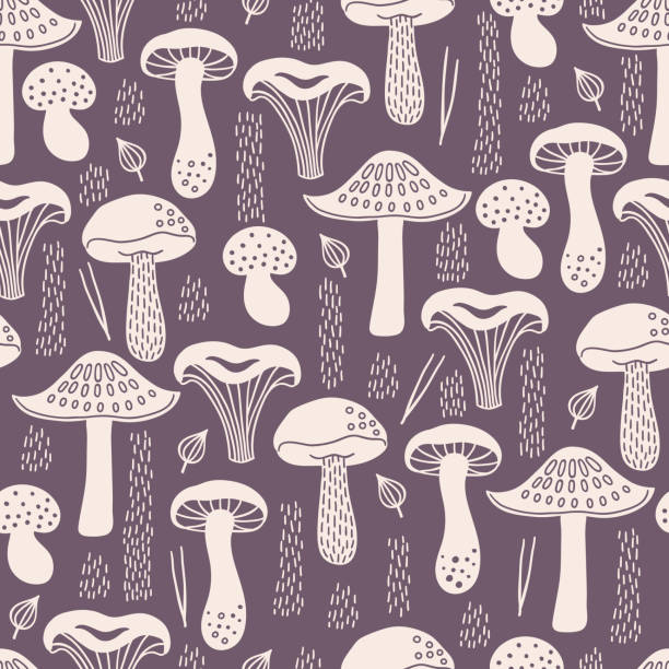 ilustrações de stock, clip art, desenhos animados e ícones de autumn seamless pattern with white silhouette mushrooms, leaves, fir needles - cogumelos