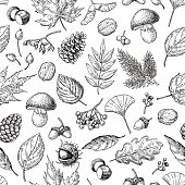 Autumn seamless vector pattern with leaves, berries, fir cones,