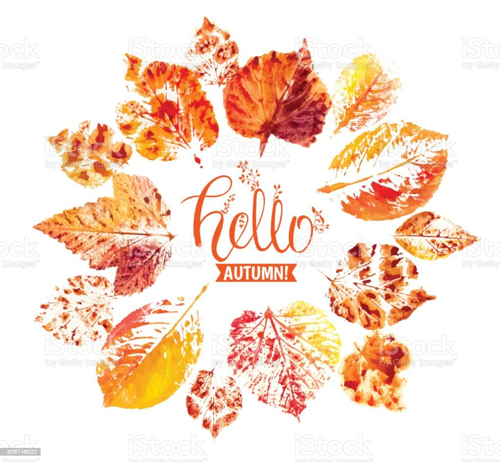 Autumn season banner. Greeting card with inscription Hello, Autumn and hand drawn watercolor fall leaves. vector art illustration