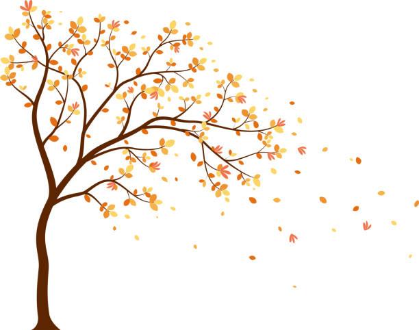 stockillustraties, clipart, cartoons en iconen met herfst seizoen met vallende bladeren met vogel voor behang sticker - vogel herfst