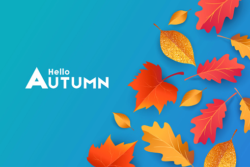 Autumn seasonal background with border frame with falling autumn golden, red and orange colored leaves on blue background, place for text