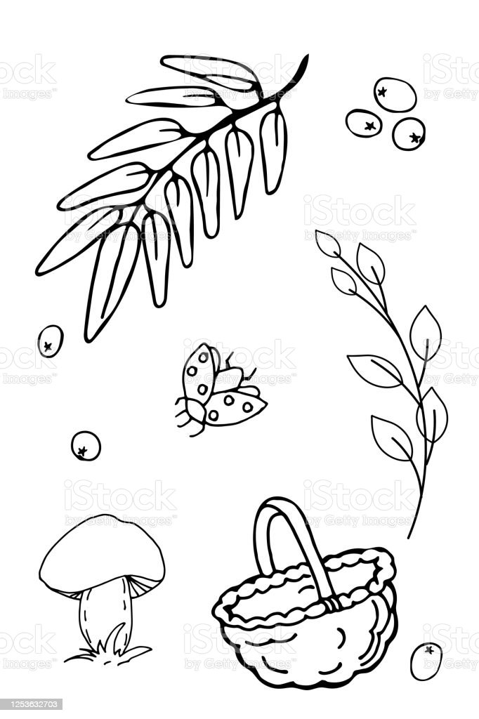 Autumn Set Of Outline Hand Drawing Images In Form Of Coloring Pages Stock Illustration Download Image Now Istock