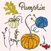 istock autumn set with pumpkins 1340663984