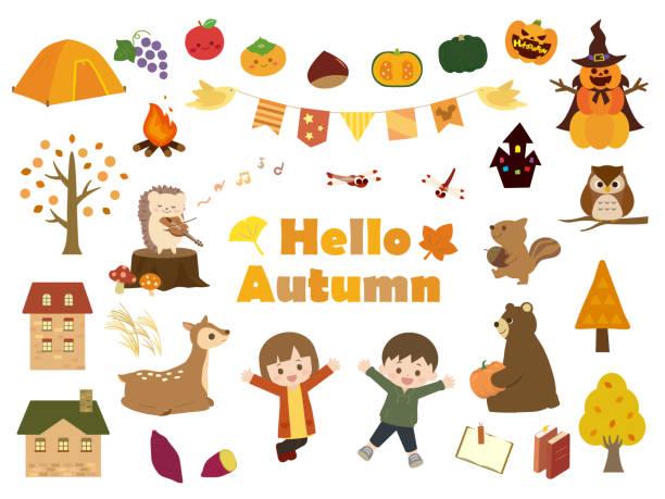 illustrazioni stock, clip art, cartoni animati e icone di tendenza di autumn set2 - miscanthus sinensis