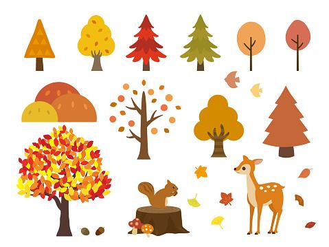 Autumn set3