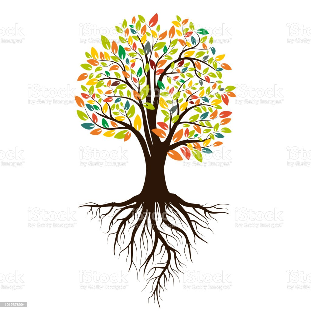 Autumn silhouette of a tree with colored leaves. Tree with roots. Isolated on white background. Vector illustration vector art illustration