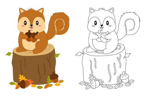 Autumn Squirrel Coloring Page Vector Set