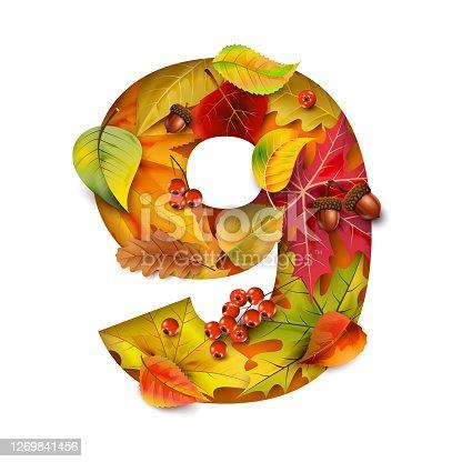 istock Autumn stylized alphabet with foliage. Digit9. 1269841456