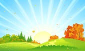 Vector cartoon drawing of a colorful autumn forest, beautiful sunrise landscape
