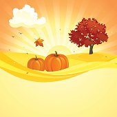 Vector illustration of an autumn sunset background with pumpkins and red foliage tree.