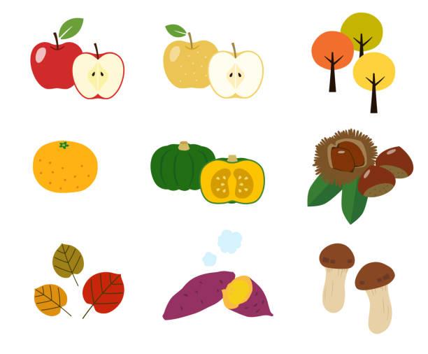 秋の味覚・秋葉のアイコンを設定 - 松茸点のイラスト素材/クリップアート素材/マンガ素材/アイコン素材