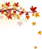 autumn season falling leaves concept background
