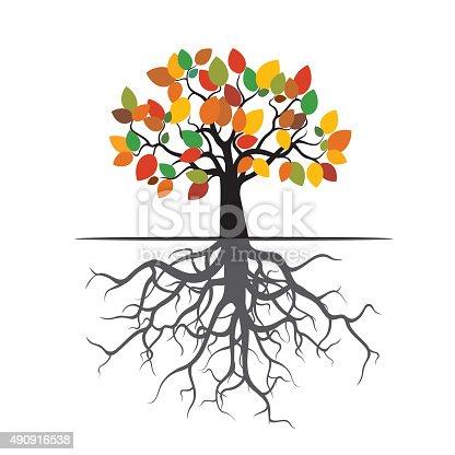 Herbst Baum Farben Leafs Und Wurzeln Stock Vektor Art und mehr ...