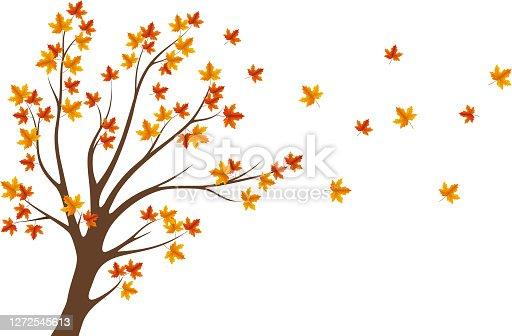 istock autumn tree 1272545613