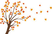 leaves falling autumn tree design element