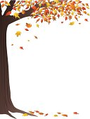 Falling leaves and a tree in autumn make a border or frame.