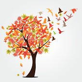 Autumn seasonal concept vector illustration background with falling leaves, sun beams and flying birds