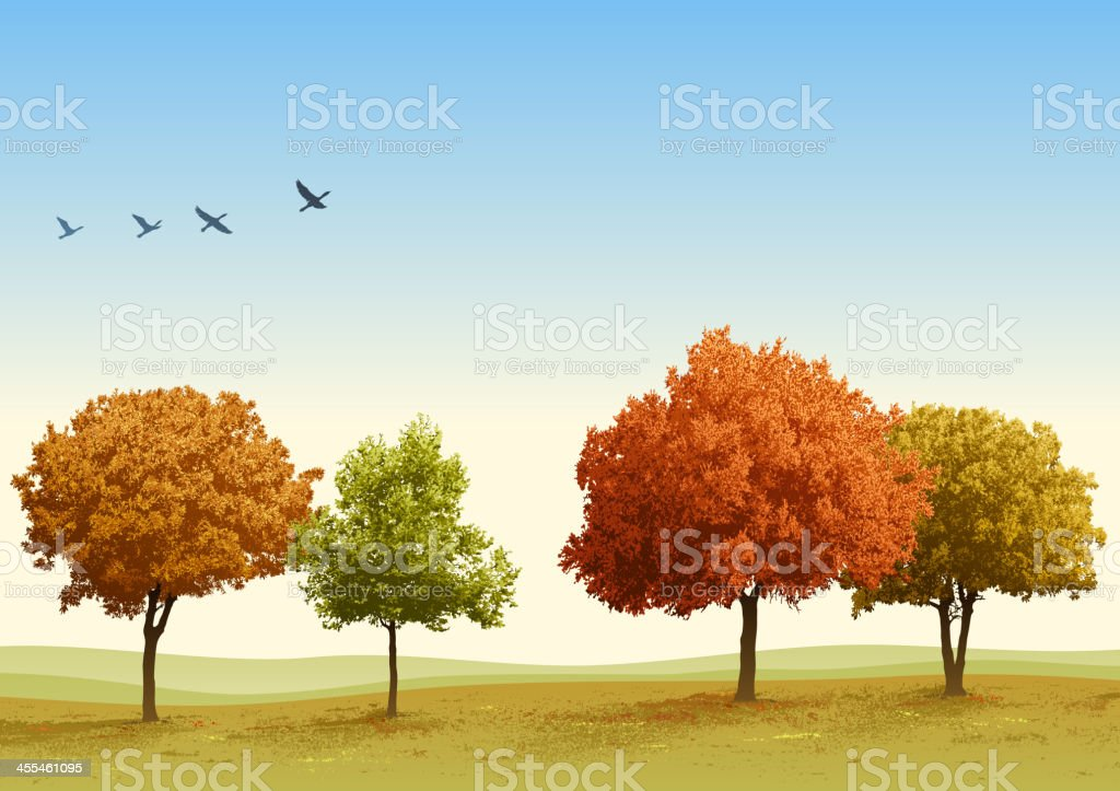 Autumn Trees Autumn background. All elements are separate objects, grouped and layered. File is made with gradient. Global color used. 300dpi jpeg included. Please take a look at other works of mine linked below. Autumn stock vector