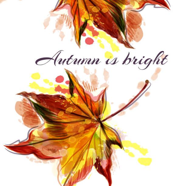 sarı kırmızı akçaağaç yaprağı ile sonbahar vektör arka plan. sonbahar parlak - start stock illustrations