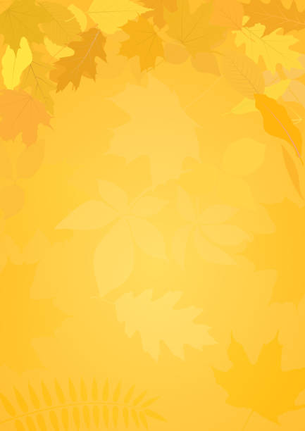 autumn autumn background with leaves fall background stock illustrations